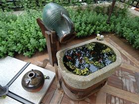 美式庭院其它实景图