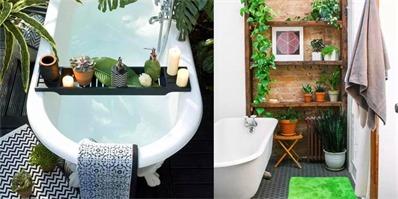 在浴室放置绿植是个环保又时髦的装饰方式