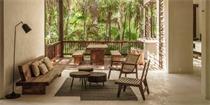 图卢姆树屋:一个丛林逃生的体验